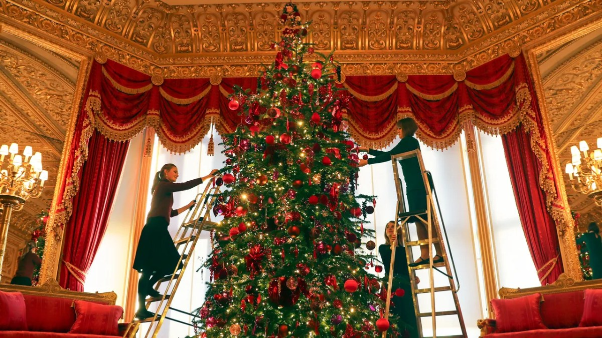 A 20-foot tree fit for a