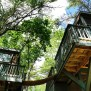 Tree House For Rent Back River Maine Weekend Getaways