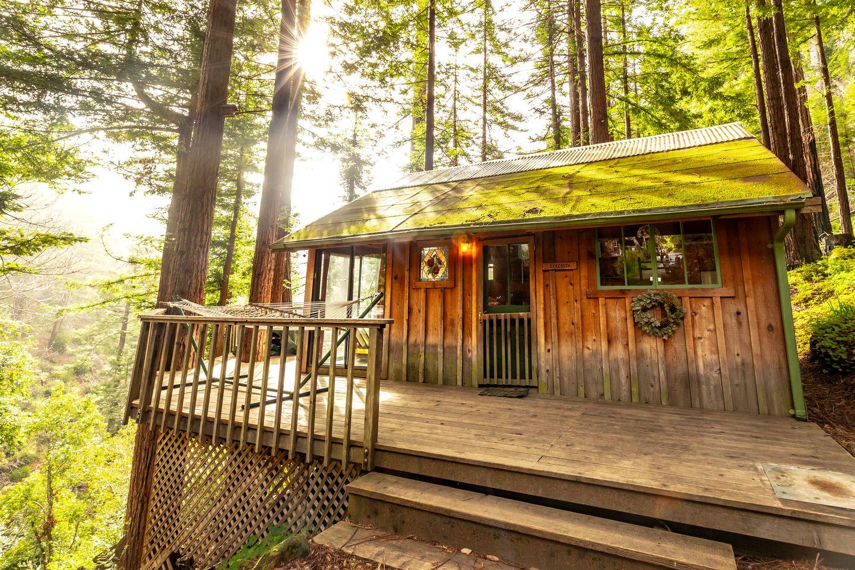 Luxury Cabin Tree Houses In California Carmel Lodging