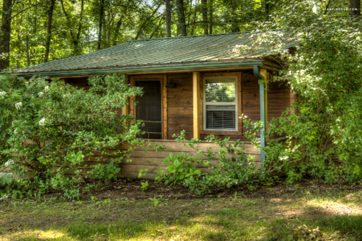 Cabins for Rent near the Daniel Boone National Forest