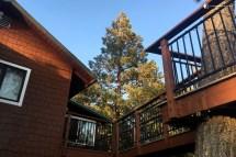 Julian California House