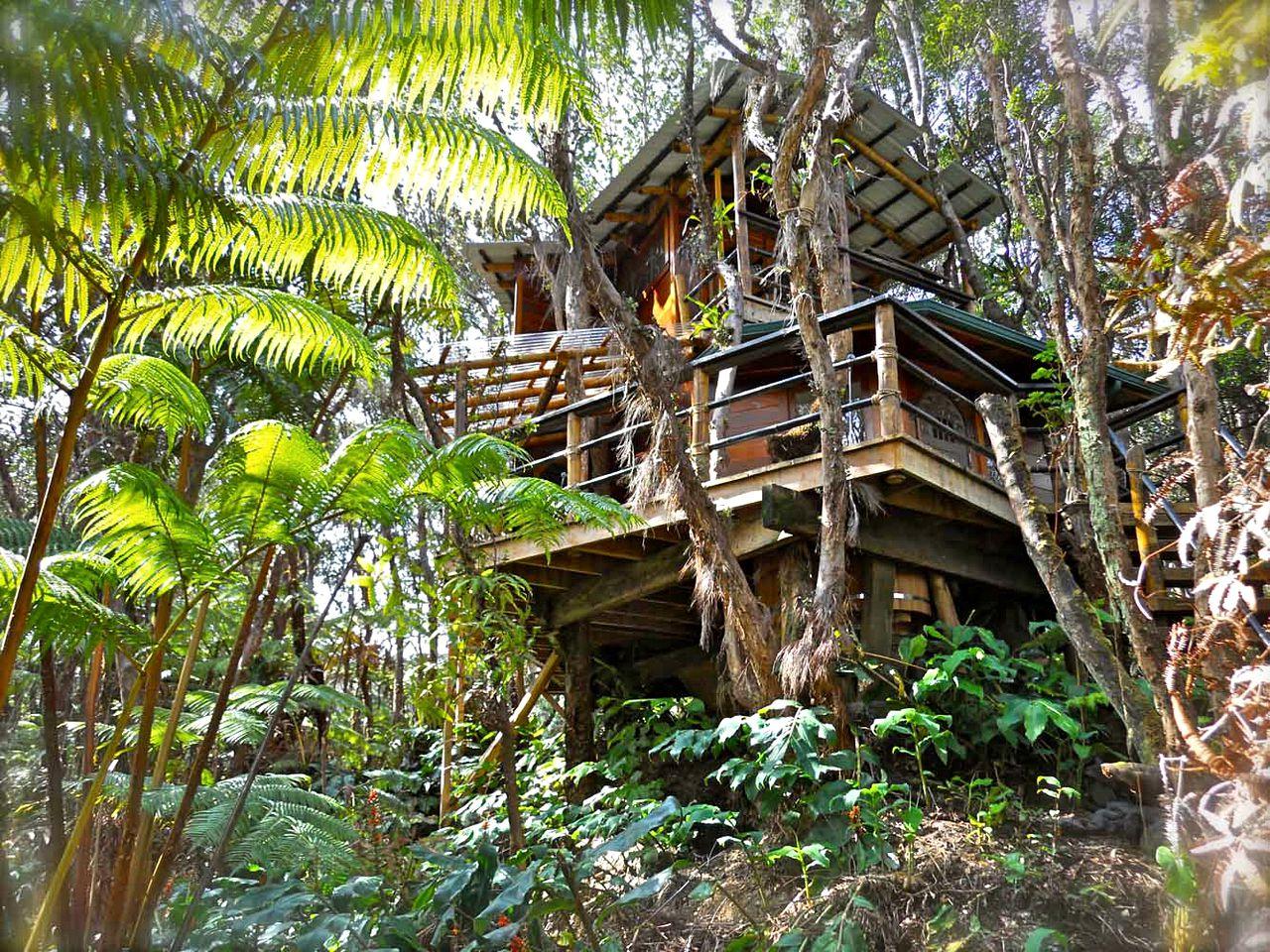 Tree House Volcano Big Island Hawaii Glamping Hub