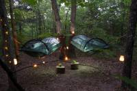Hanging Tree Tent Rentals in 16-Acre Forest Park Hills ...