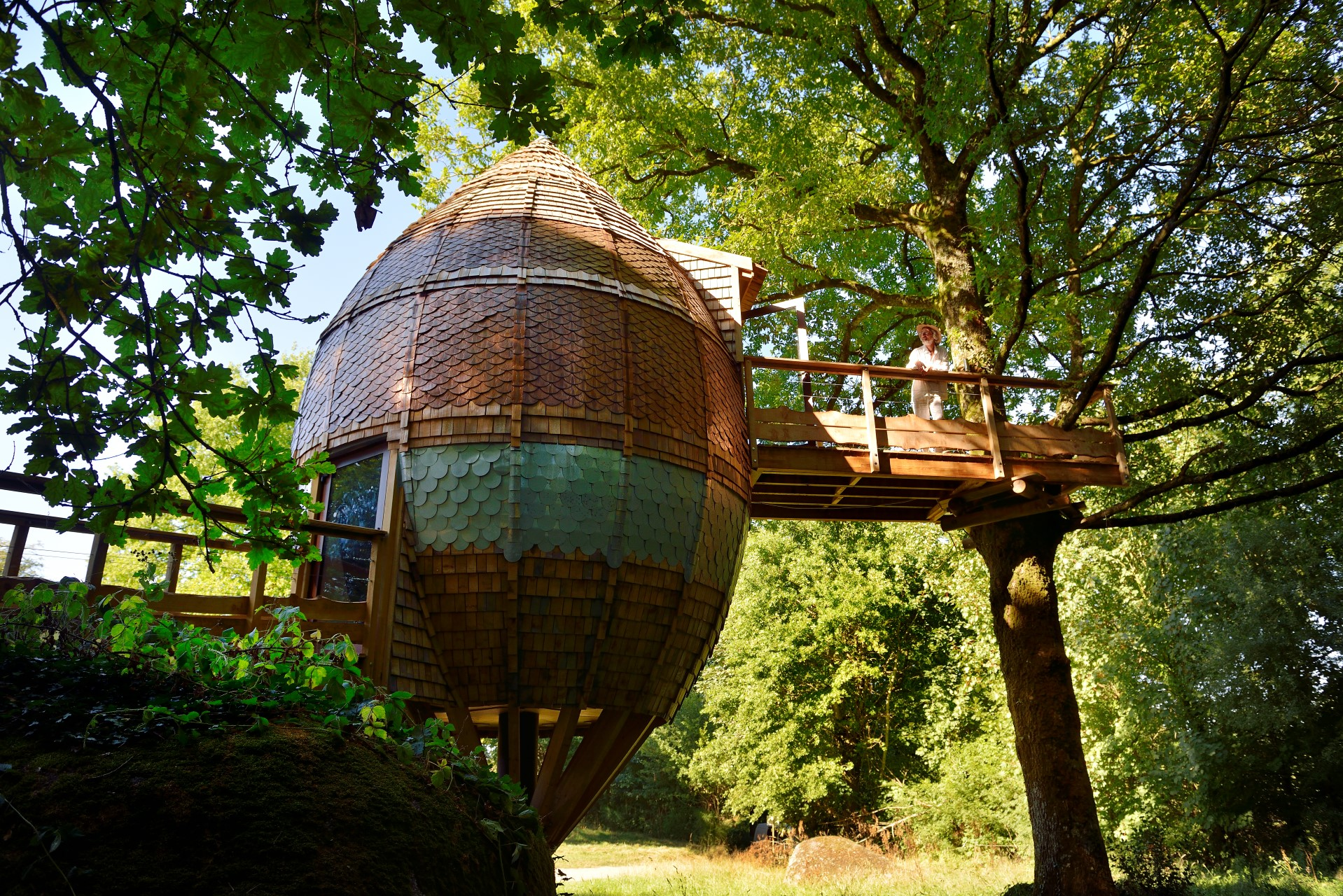 Tree House in Pays de la Loire France