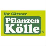 Jobs Bei Pflanzen Kölle Gartencenter Glassdoor De