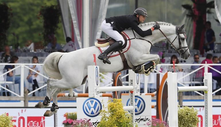 Image result for alicante stallion
