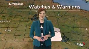Global News Morning Weather Update – March 13