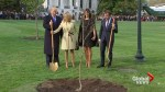 Trump, Macron plant tree together at White House