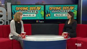 Spring break activity ideas at the Edmonton Public Library