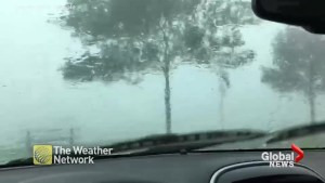 Video shows storm blow through Leamington, Ont.