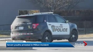 Milton school goes into lockdown after firearm reported