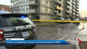 Toronto's second homicide of 2019