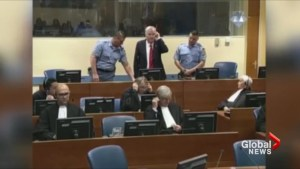 Ex-Bosnian Serb commander Mladic sentenced to life imprisonment