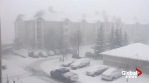 Calgary resident captures video of the late-April blizzard hitting the city