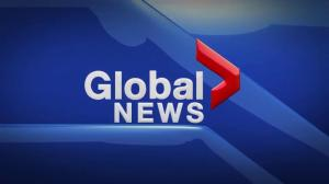 Global News at 5 Edmonton: Nov. 6