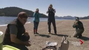 Eating the local cuisine in Haida Gwaii