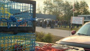 N.S. lobster fishermen protesting outside DFO offices against illegal poaching