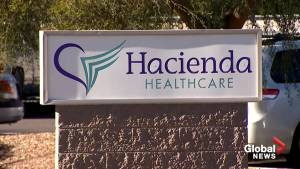 Arizona police investigate woman who allegedly gave birth while in vegetative state