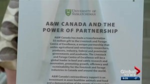 A&W commits $5M to beef research at the University of Saskatchewan