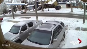 Neighbours catch attempted car theft on surveillance video