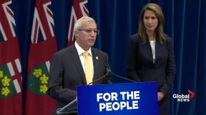 Beer and liquor sales won't be privatized despite cannabis retail plan: Fedeli (00:17)