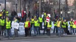 Calgary yellow vest protesters target economy, immigration at rally