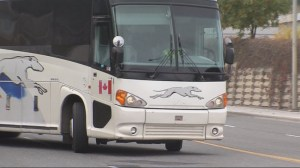Greyhound to cease operations across Western Canada