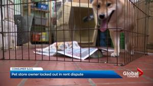 Animals locked in Toronto pet store after rent dispute