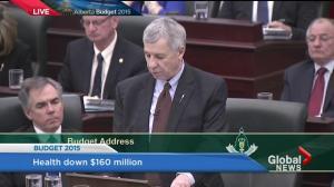 Hon. Robin Campbell announces ten year plan.