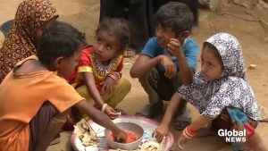 Yemen's villages starve as devastating war enters fifth year