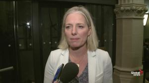 Catherine McKenna calls NDPs climate emergency 'problematic'