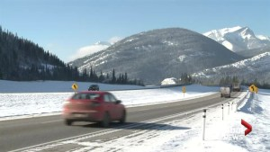 Alberta moves ahead on proposed animal overpass on Highway 1 near Canmore