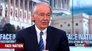 Ed Markey cautions against allowing Trump to push ahead with emergency declaration