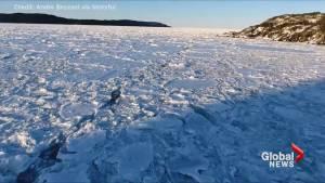 Drone footage captures sea ice across North Atlantic