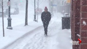 Winter storm brings 40cm of snow to parts of N.B.