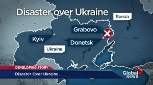 Disaster in Ukraine: Malaysian jetliner shot down in conflict zone