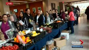 Bow Valley College gives students and community access to fresh vegetables