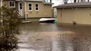 Homes along Ottawa River left flooded