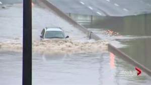 Toronto flooding here to stay, urban planning expert says