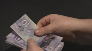Canada's underground economy thriving: Statistics Canada (01:02)