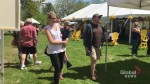 Peterborough's 6th Annual Dandelion Festival took over Millennium Park on Sunday