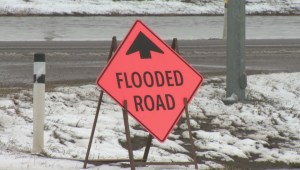 Lethbridge County declares local state of emergency due to flooding