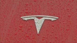 Elon Musk breaks ground on Tesla's Shanghai factory