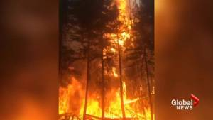 Slow motion video captures fury of B.C. wildfires