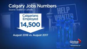 Calgary still plagued by job losses and the numbers may be higher than reported