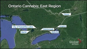 Cobourg and Port Hope opt-in to allow retail cannabis in the communities