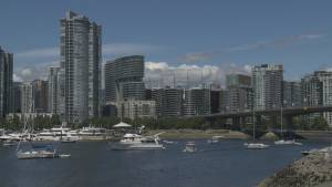 A report on the state of downtown Vancouver