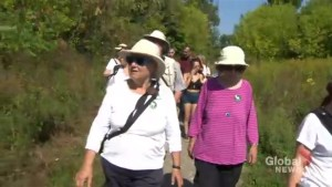 Candidates tour Pierrefonds green space ahead of Quebec election