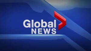 Global News at 5 Edmonton: Nov. 2