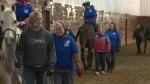 Volunteers at the heart of horseback riding program
